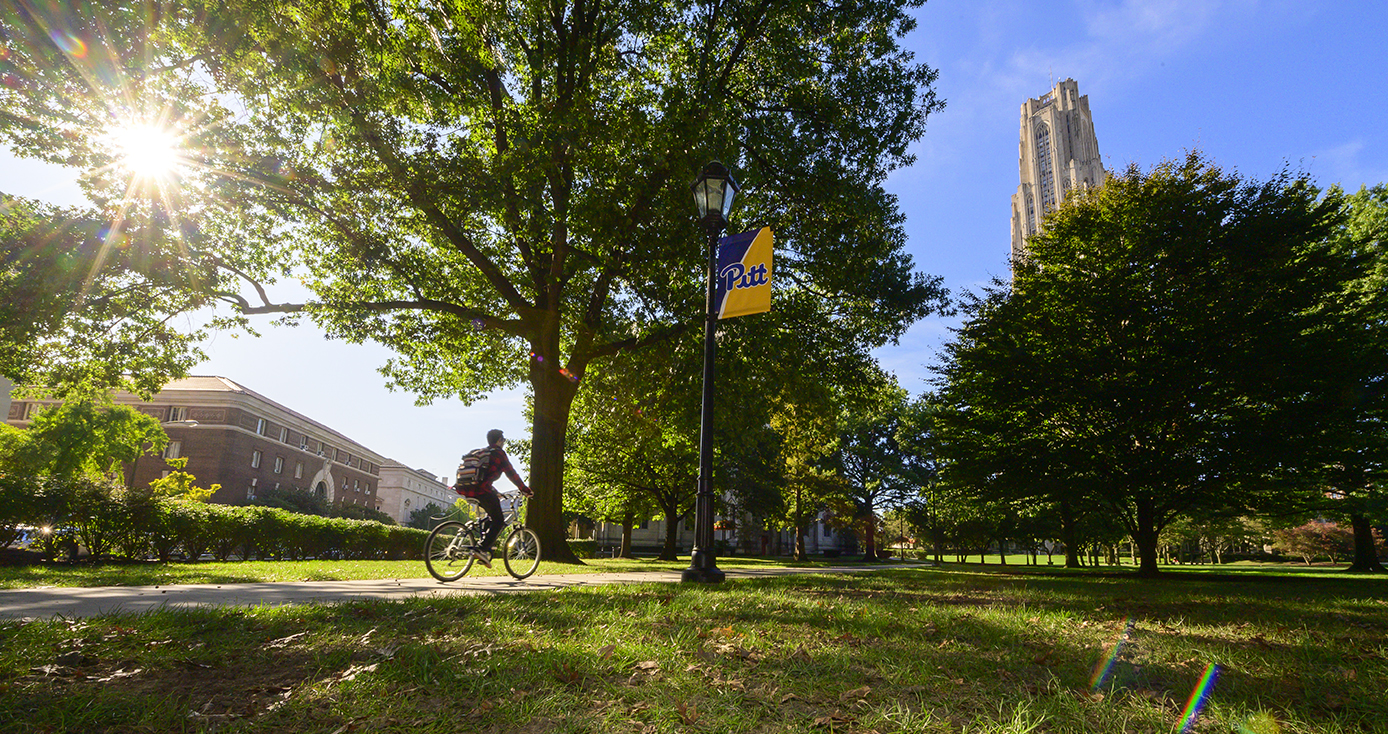 A person rides a bicycle next to a green field with the cathedral of learning in the distance