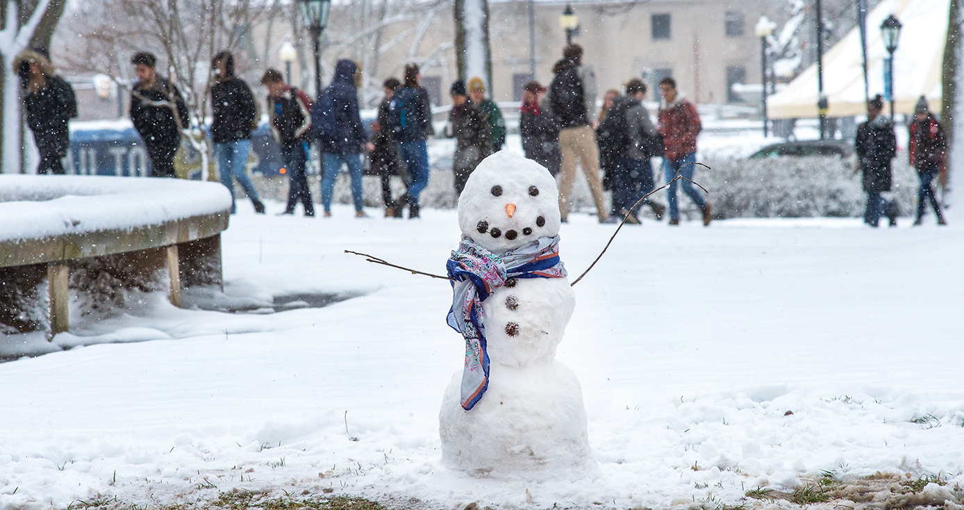 A snow man in a purple scarf
