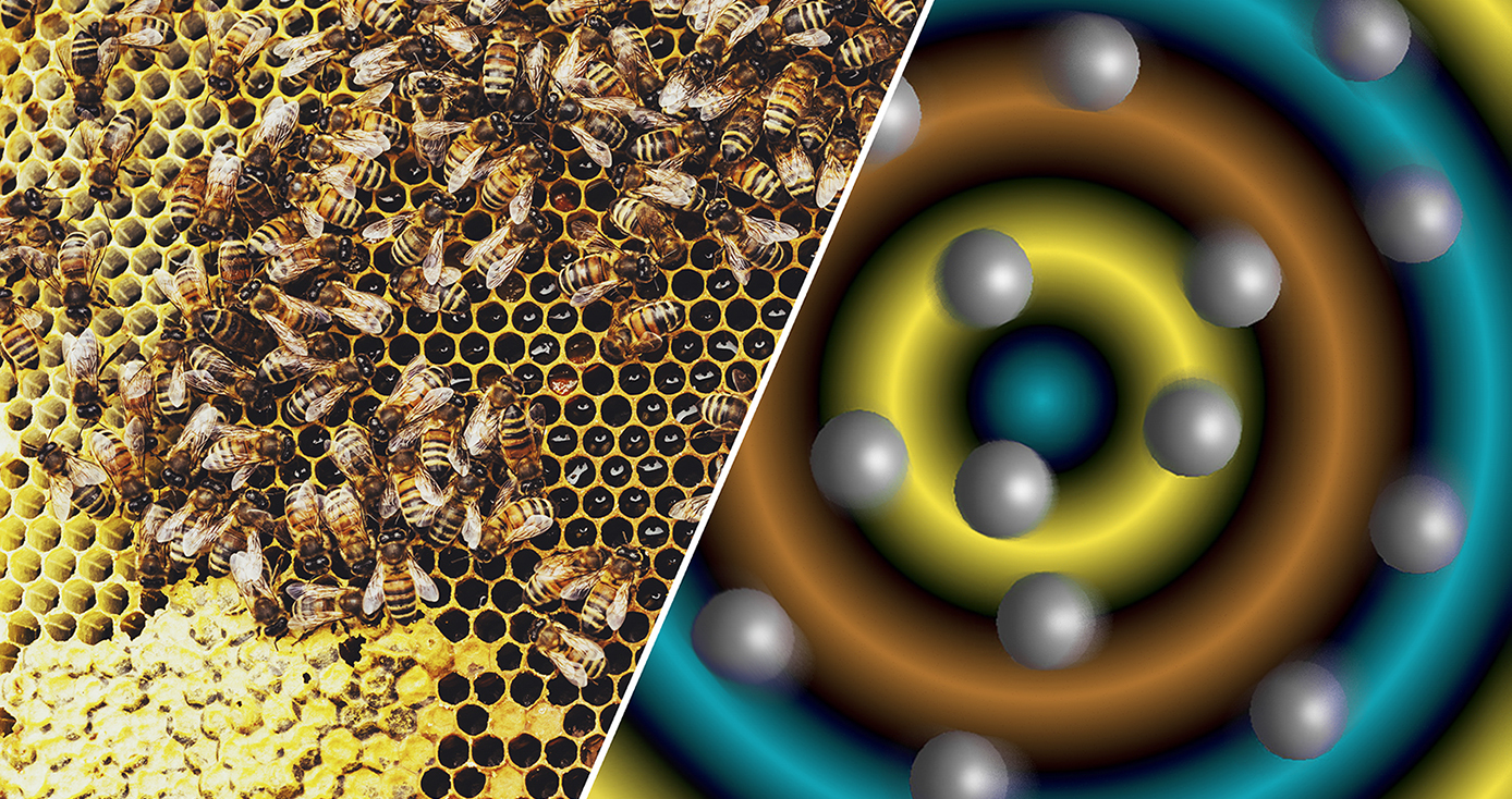 illustration with bees on the left and a model of particles on the right