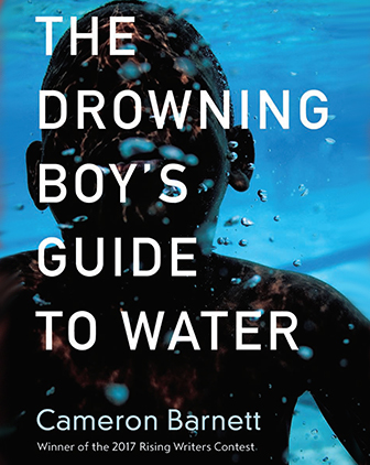 book cover of The Drowning Boy's Guide to Water