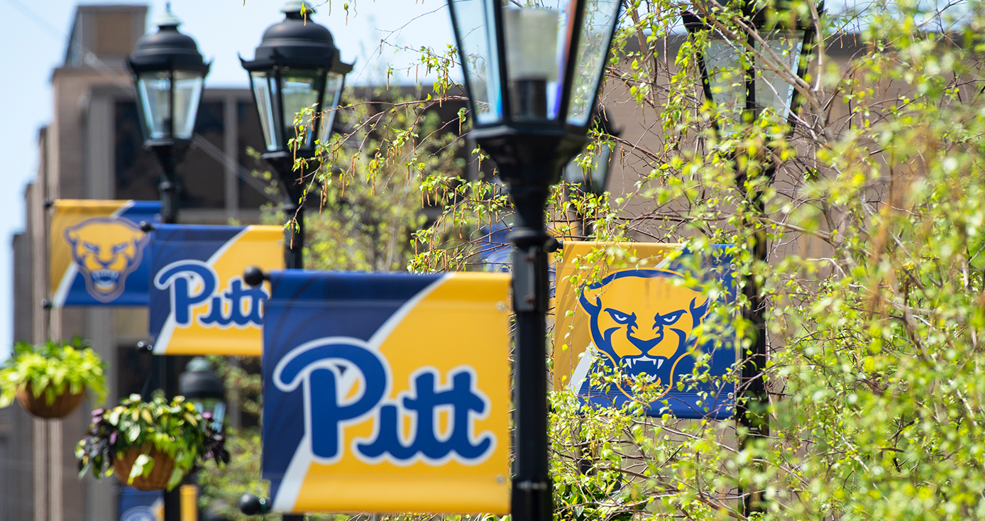 A series of Pitt flags on lamp posts