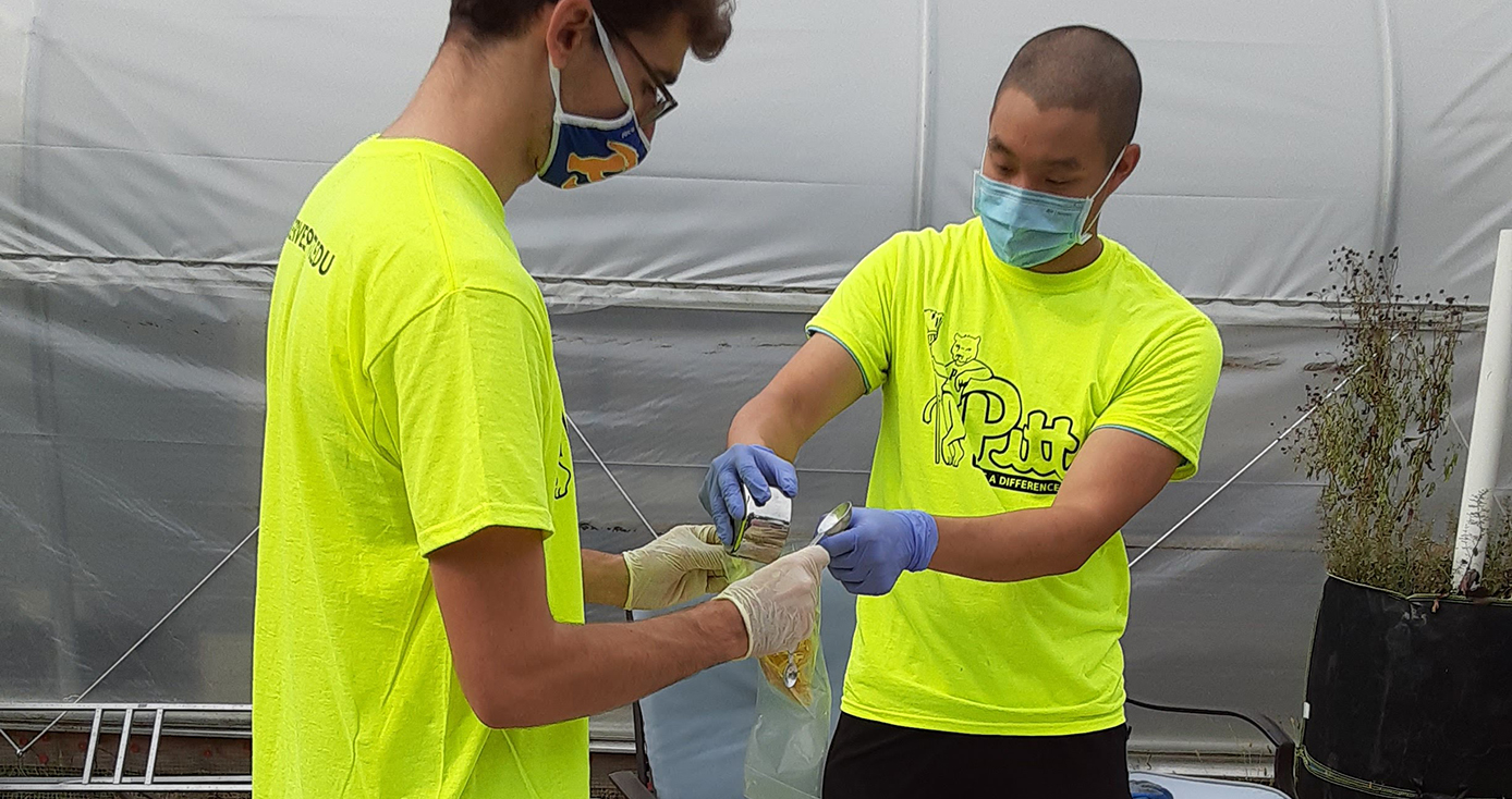 Two people in neon yellow shirts with face masks packing a bag