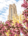 Cathedral of Learning with blooming pink tree in the foreground