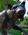 A panther statue