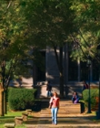 Student walking down a pathway with trees