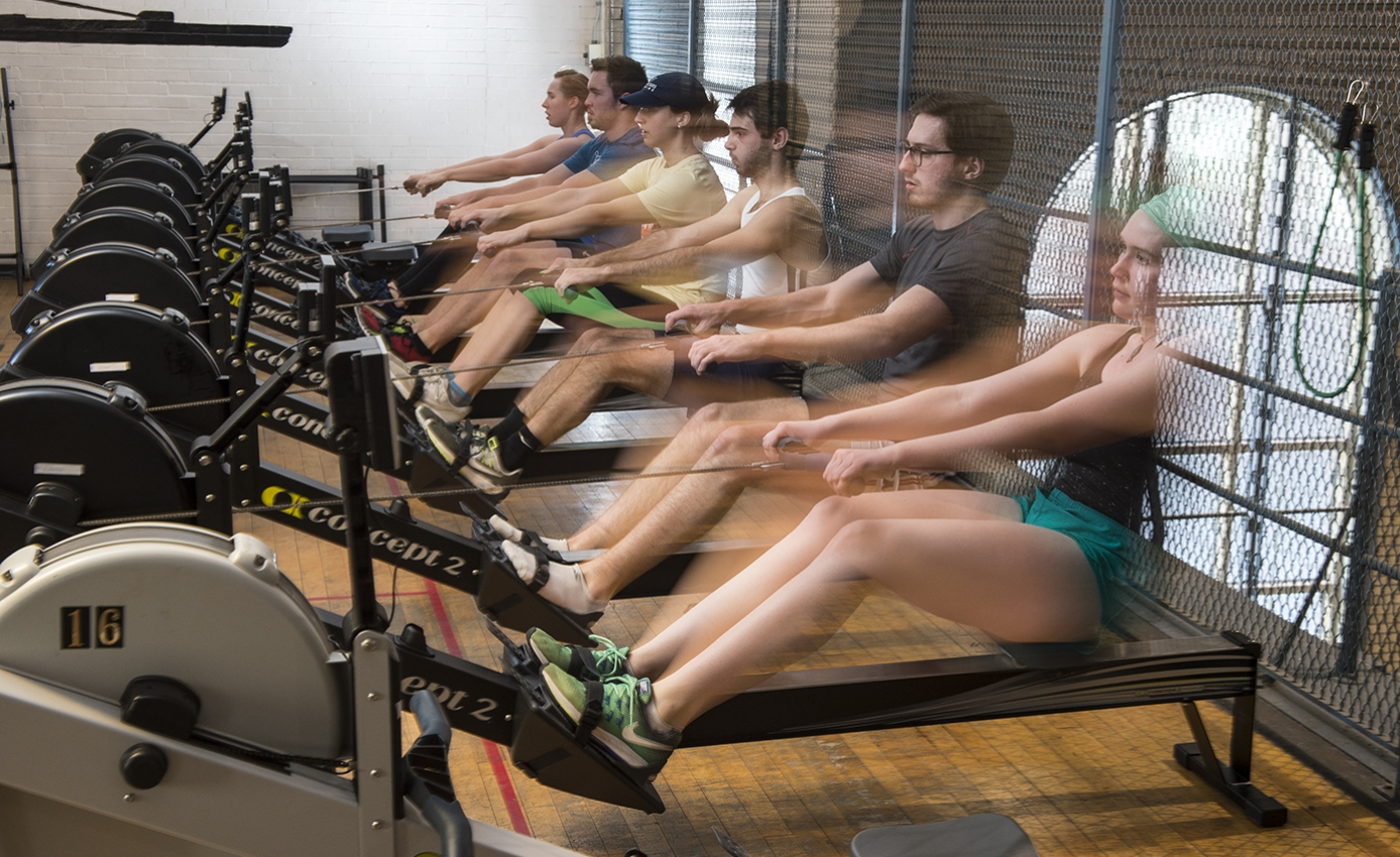 a group of students on rowing machines