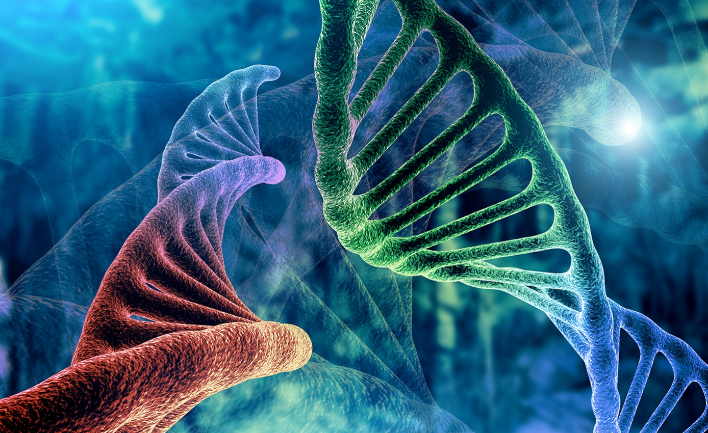 A depiction of DNA rendered in blues, greens and reds