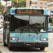 a blue 71D bus