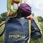 blue bag with gold printing that says BYO[Bag] on it, with a grassy background and vegetables tumbling into the bag