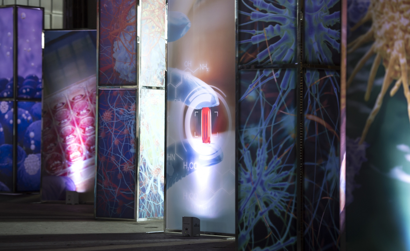 artistic-scientific display panels at 500 Baum announcement event