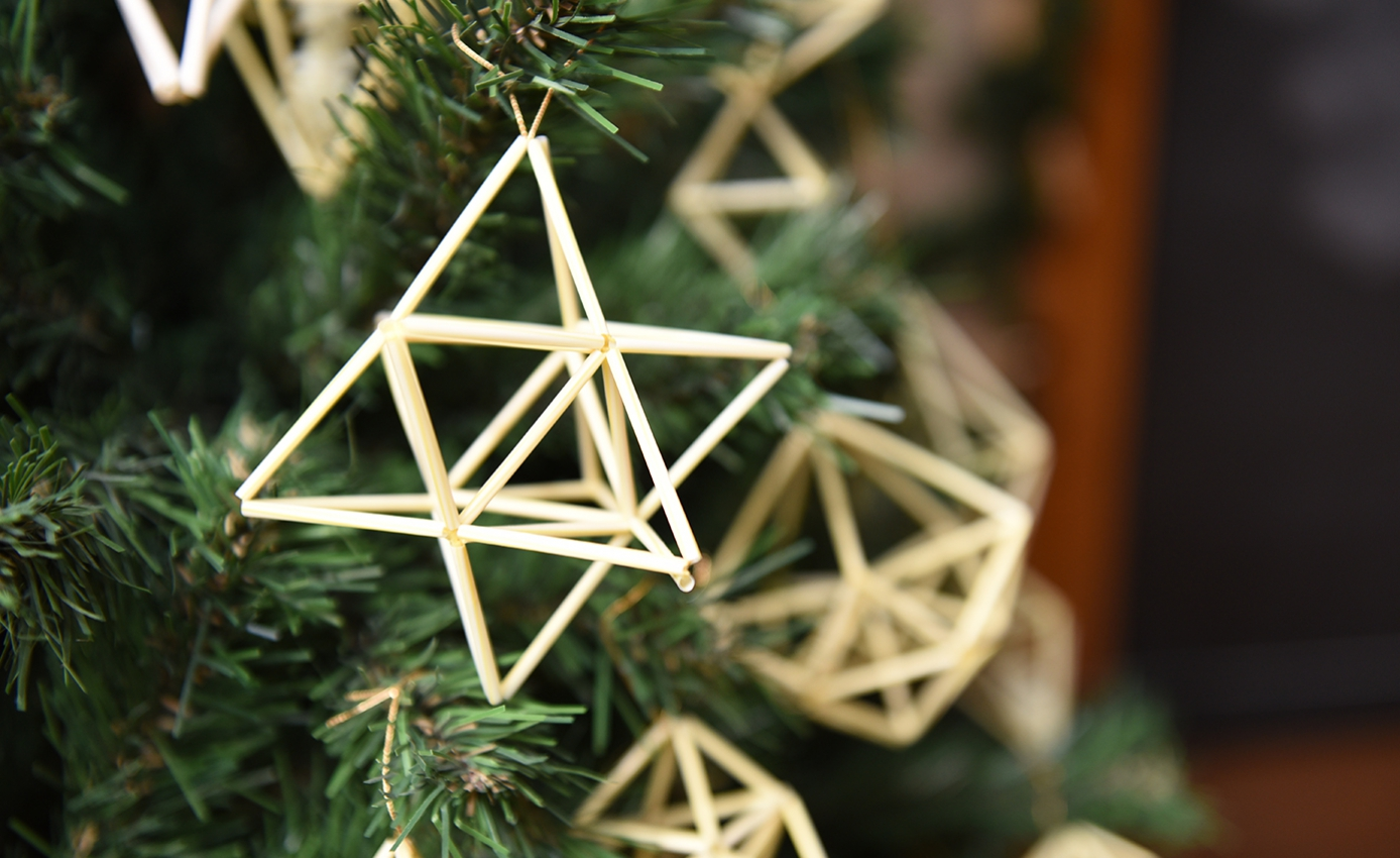 White star-shaped ornaments on a tree