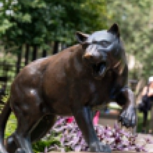 Panther statue during the summer