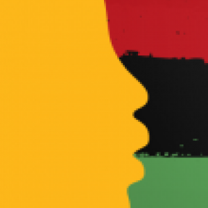 Yellow silhouette on a red black and green flag