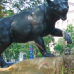 Statue of the University of Pittsburgh panther
