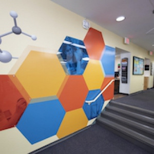 The Study Lab's wall, decorated with multicolored hexagons