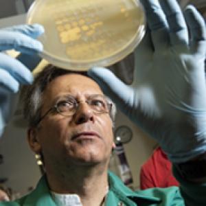 Graham Hatfull holding a Petri dish