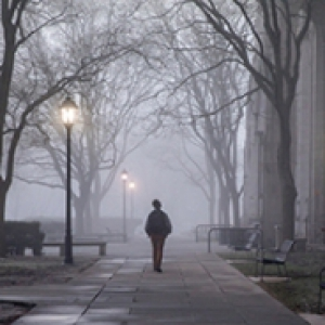 A person walks alone on a sidewalk in foggy weather beneath street lamps