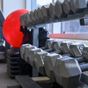 A rack of dumbbells next to a red exercise ball