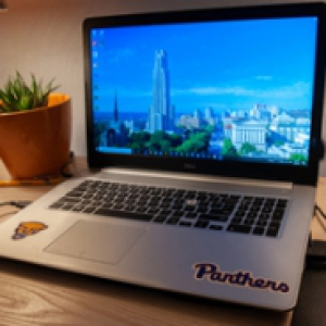 a laptop with Panthers stickers on it