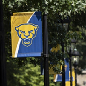 a blue and gold panther flag on campus