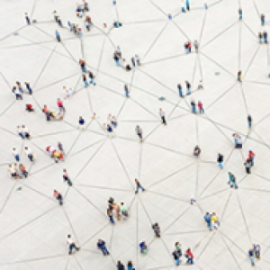 A network of groups of people connected by lines