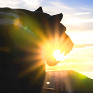 Panther statue with the sun in it's mouth