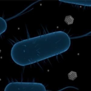 Illustration of microbe